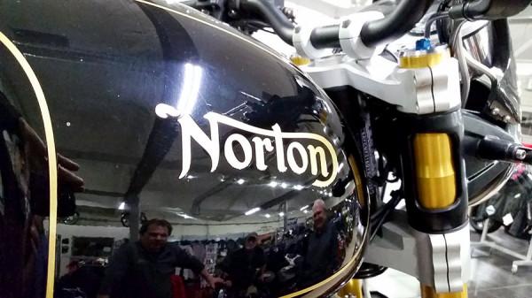 norton-8